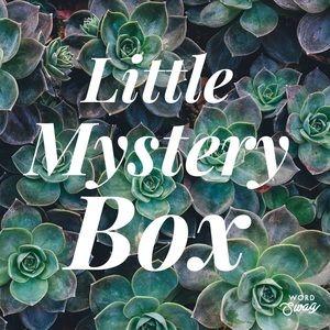 Little Mystery Box